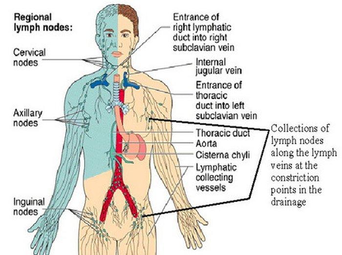 Mal di schiena al cambiamento di vertebre